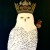 l-ross-gallery_leslie-barron_snowy-owl-with-monarch-butterfly_48x36