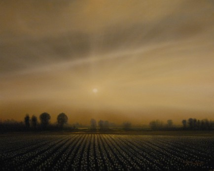 l-ross-gallery_matthew-hasty_cotton-field_48x60