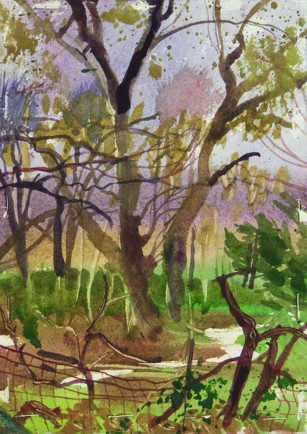 l-ross-gallery_jeanne-seagle_spring-trees_19x16