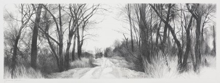 l-ross-gallery_jeanne-seagle_beaver-lake-road_22.5x50