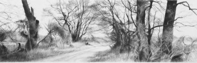 l-ross-gallery_jeanne-seagle_trees-and-vines_16-5x44