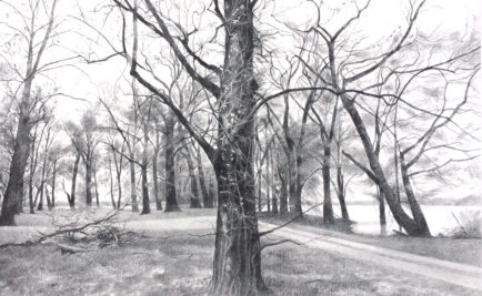 l-ross-gallery_jeanne-seagle_trees-by-the-lake_32x47
