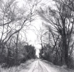 l-ross-gallery_jeanne-seagle_road-through-trees_23x23